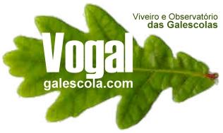 Logotipo da Vogal